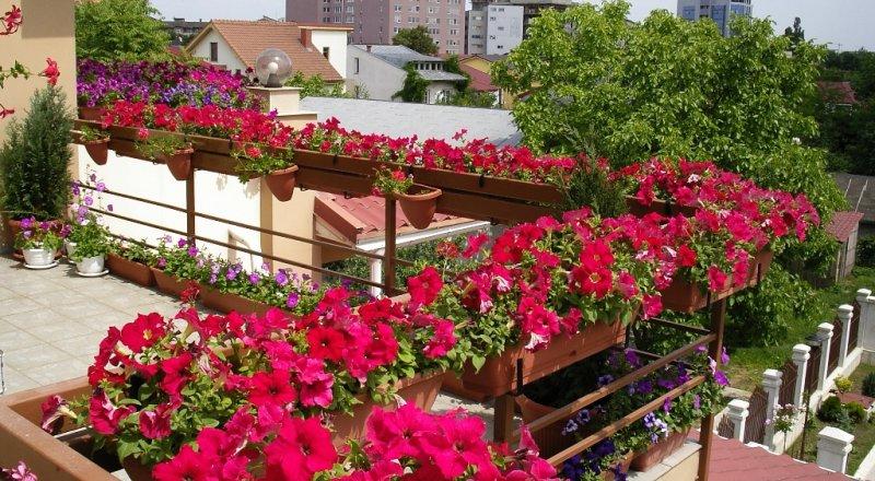 erkély-balkon