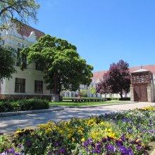 Tokaj egyetem